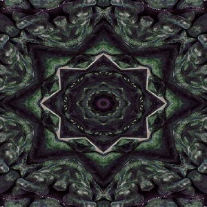 abstract kaleidoscopic kale