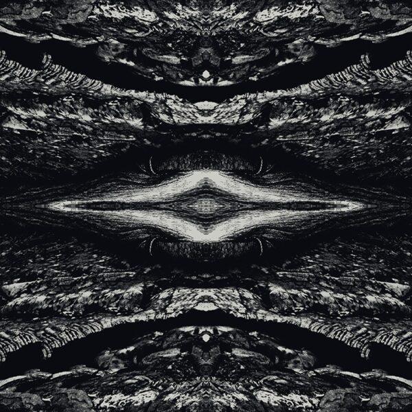 monochrome kaleidoscopic terrain scape