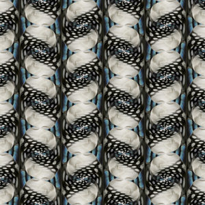 of feathers digital pattern print bird stock art image